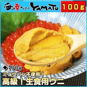 天然生ウニ 100g 冷凍食品 完全無添加 うに 雲丹...