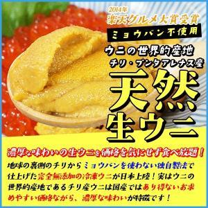 天然生ウニ 100g 冷凍食品 完全無添加 う...の詳細画像1
