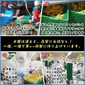 天然生ウニ 100g 冷凍食品 完全無添加 う...の詳細画像3