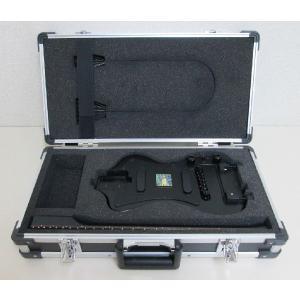 ポータブル型高級エレキギター SGT-3DPEG01CS シングルコイル ハードケース付 sgtechg