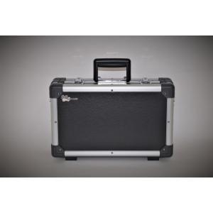 ミニエレキギターSGT-3DPEGS専用ハードケース SGT-3DPEGSHC|sgtechg