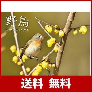 2020 野鳥カレンダー ([カレンダー])|sh-price