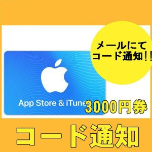 iTunesカード 3000円 カード決済不可 ポイント支払OK!