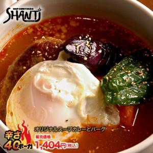 北海道札幌発祥のSHANTi(シャンティ)オリジナルスープカレーとハンバーグ<辛さ40ボーガ>超激辛注意!!|shanticurry