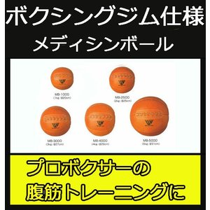 (メディシンボール 5kg)ウイニング メディシンボール5k...