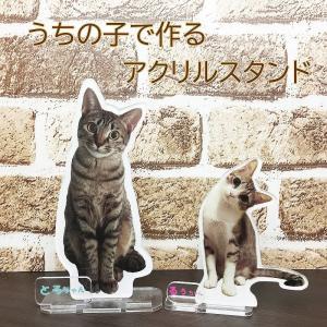 ペット仏具 うちの子の写真で  アクリル フォトスタンドS オリジナル 愛猫 フォトプレート 愛犬 ウエルカムボード ペット メモリアル 位牌  思い出|sharero-y