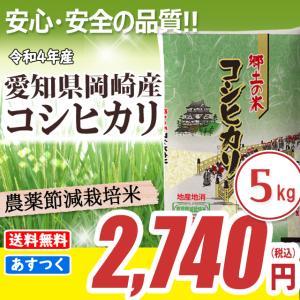 コシヒカリ 5kg 白米 お米 米 平成30年産 送料無料 (一部地域除く)  愛知県産 農薬節減米|sharinetmaihome