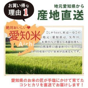 コシヒカリ 5kg×2袋 10kg 白米 お米 米 令和1年産 ★ 送料無料 (一部地域除く) 愛知県産【ギフト】|sharinetmaihome|05