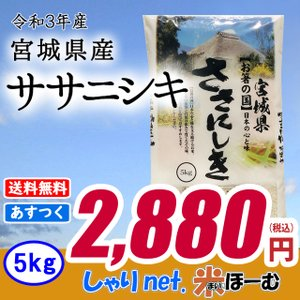 ササニシキ 5kg 白米 お米 米 平成30年産 送料無料(一部地域除く) 宮城県産|sharinetmaihome