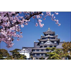 PT-001 桜咲く岡山城|shashinkoubou