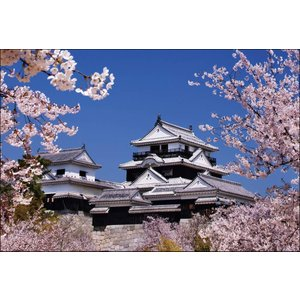 PT-004 桜咲く松山城|shashinkoubou