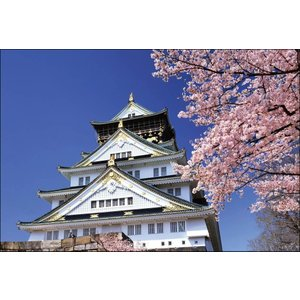 PT-006 桜咲く大阪城|shashinkoubou