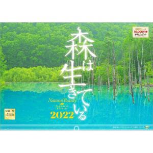 カレンダー2020 壁掛け 「森は生きている」自然 緑 綺麗 写真 秋 風景 絶景 お洒落 スケジュール|shashinkoubou