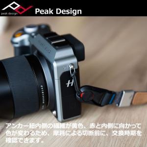 【メール便 送料無料】 ピークデザイン AL-4 アンカーリンクス 【即納】 shasinyasan 05