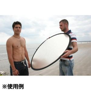 Lastolite LL LR2031 リフレクター 50cm シルバー/ホワイト shasinyasan