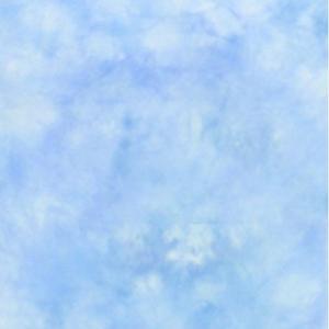 Lastolite LL LB7648 イージーケア ニット製背景(3×7m):メイン|shasinyasan