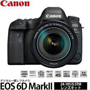 キヤノン EOS 6D MarkII 24-105 IS STM レンズキット 【送料無料】 shasinyasan