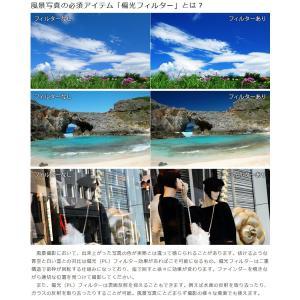 【メール便 送料無料】 マルミ光機 DHG スーパーサーキュラーP.L.D 46mm径 【即納】|shasinyasan|02