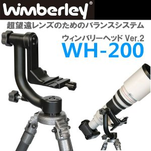 ウィンバリー WH-200 ウィンバリーヘッド Ver.2 shasinyasan