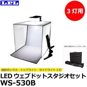 LPL L18573 LEDウェブドットスタジオセット WS-530B 【送料無料】|shasinyasan