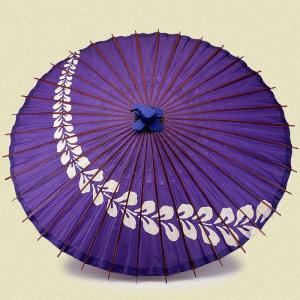 蛇の目 紫 藤柄|shibokusansou