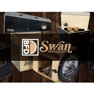 fxpansion / BFD3/2 Expansion KIT: Swan Percussion(...