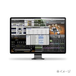 Avid / Pro Tools DigiLink I/O License(9938-30189-00)(オンライン納品専用)※代引不可|shibuya-ikebe
