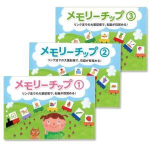 記憶力が育つ〜メモリーチップ1,2,3セット|shichida
