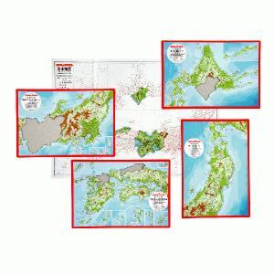 日本地図パズル|shichida