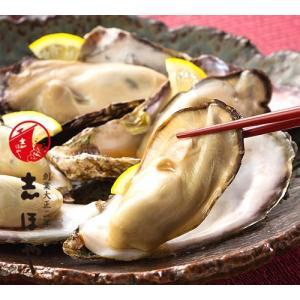 殻つき生かき約19〜20個|shihoya