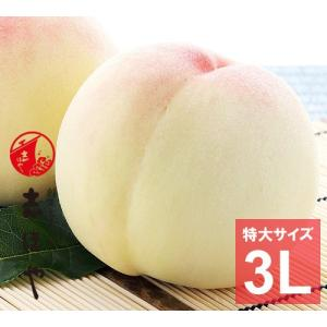 水蜜桃 ≪特大3Lサイズ≫ 岡山 白桃 大玉 お中元 ギフト お供 お取り寄せ(3玉)|shihoya