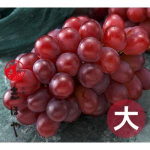 紫苑(しえん)特大サイズ【お歳暮ギフト】約1kg×1房|shihoya