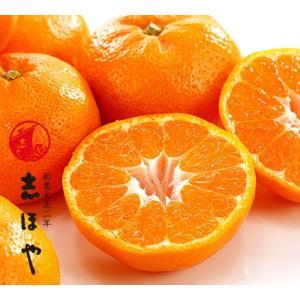 和歌山県産 有田みかん3kg(22〜27玉)詰|shihoya