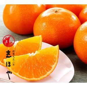 紅マドンナ(紅まどんな)2L〜3Lサイズ 予約販売 お歳暮 ギフト 高級みかん約3kg(9〜13玉位)|shihoya