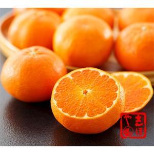 甘平約2.5kg(8〜11玉)詰|shihoya