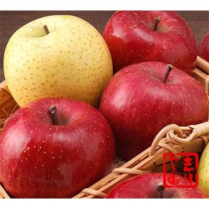 りんご詰合せ【お歳暮ギフト】(12玉詰)|shihoya