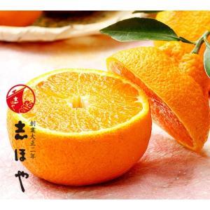 完熟葉付きデコポン4kg(12〜16玉)詰|shihoya