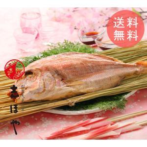 名物塩むし桜鯛750g前後(約34cm2人前)特製醤油付|shihoya
