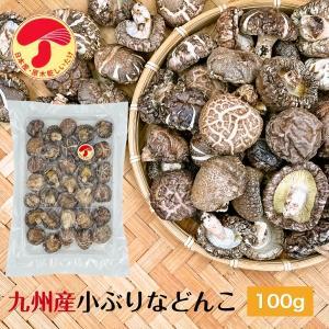 干ししいたけ 九州産 小ぶりなどんこ100g 送料無料 原木栽培 (干し椎茸 干しシイタケ)