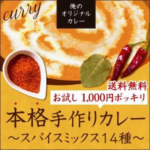 カレー スパイス ミックス セット 14種(12皿分) (つ...
