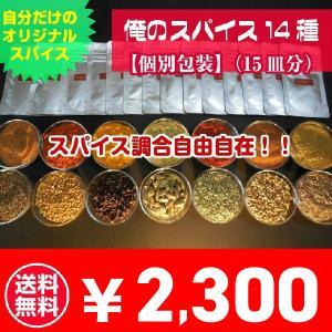 カレー スパイス お得 セット 15種 個別包装(15皿分) 俺のカレー