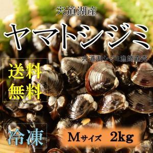 シジミ 宍道湖産 Mサイズ 2kg 送料無料 冷凍