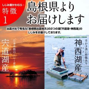 ふるさと納税でも大人気 しじみ 島根県・宍道湖...の詳細画像3