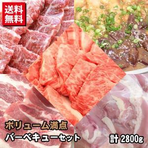 ボリューム満点5種バーベキューセット カルビ・みすじ/ヒウチ/イチボ・鶏モモ・豚バラ・ホルモンミックス たっぷり計2.8kg 焼肉 バーベキュー BBQ shikatameat