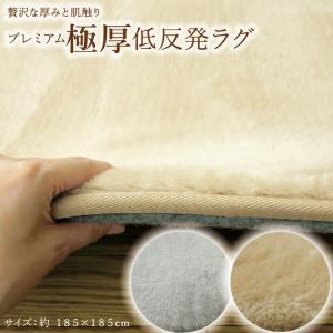 ふっくら カーペットカバー ラグ ラルゴ 185×185cm 2畳 床暖 ホットカーペット対応 こたつ敷き|shikimonoya5o5o