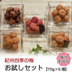 紀州四季の梅お試しセット【しそ風味・はちみつ風味・かつお風味・こんぶ風味・うす塩味】|shikinoume-osaka