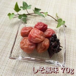 紀州四季の梅お試しセット【しそ風味・はちみつ風味・かつお風味・こんぶ風味・うす塩味】|shikinoume-osaka|02
