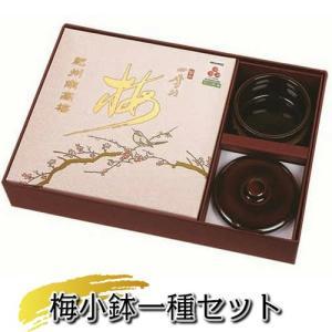 梅小鉢一種セット(四季の梅500g×1個+梅小鉢1ヶ付)|shikinoume-osaka