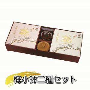 梅小鉢二種セット(四季の梅500g×2個+梅小鉢2ヶ付)|shikinoume-osaka
