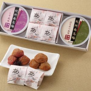 梅づくしセット しそ120g+はちみつ120g+4粒|shikinoume-osaka